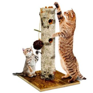 jr-farm-back-to-instinct-nature-active-tree-cat