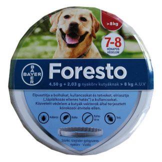 Foresto_nagy_testu_kutyaknak