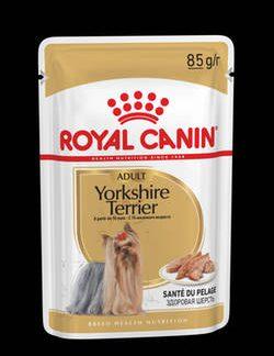 royal_canin_adult_yorkshire_terrier_alutasakos_eledel_85g